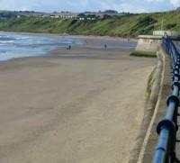 Filey dog-friendly beach, Yorkshire - Dog walks in Yorkshire