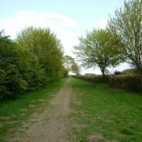 Lotherton Hall dog walk, West Yorkshire