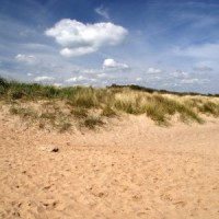 Anderby Creek dog-friendly beach, Lincolnshire - Dog walks in Lincolnshire