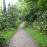Oxclose Woods dog walk, Nottinghamshire - Dog walks in Nottinghamshire