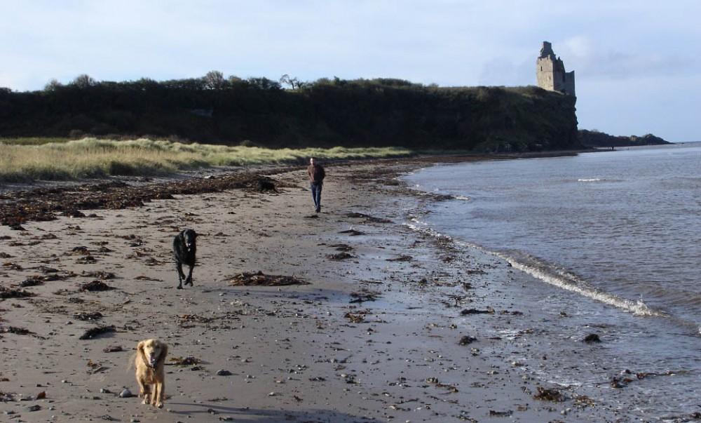 Greenan Beach dog walk near Ayr, Scotland - Dog walks in Scotland