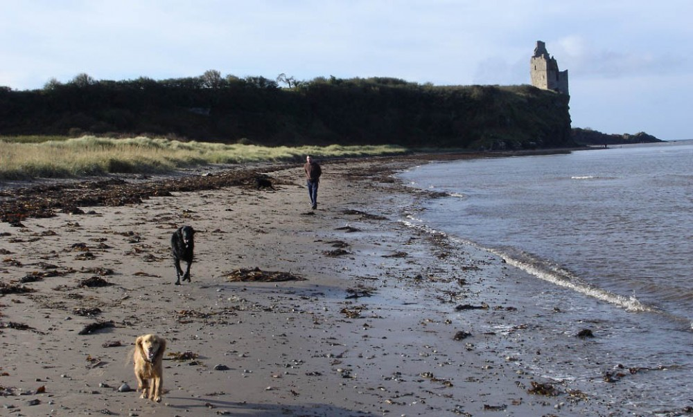 Greenan Beach dog walk near Ayr, Scotland - Dog walks in Scotland