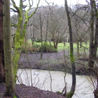 Jesmond Dene Park, Tyne and Wear - Dog walks in Tyne and Wear