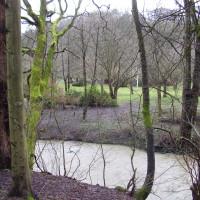 Jesmond Dene Park, Tyne and Wear - Dog walks in Tyne and Wear