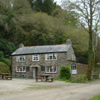 A30 dog walk and a cafe near Bodmin, Cornwall - Dog walks in Cornwall