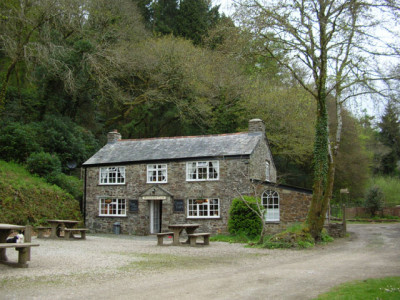 A30 dog walk and a cafe near Bodmin, Cornwall - Driving with Dogs