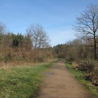 Mordiford area dog-friendly pub and dog walk, Herefordshire - Dog walks in Herefordshire
