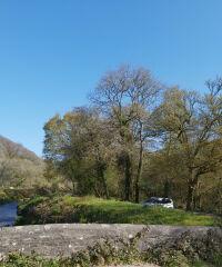 Pentewan Valley Trail plus Kings Wood, Cornwall - 20210426_094309.jpg