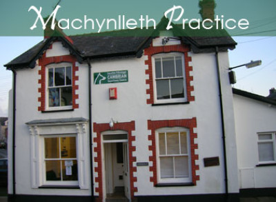 Machynlleth Vets, Powys, Wales - Driving with Dogs