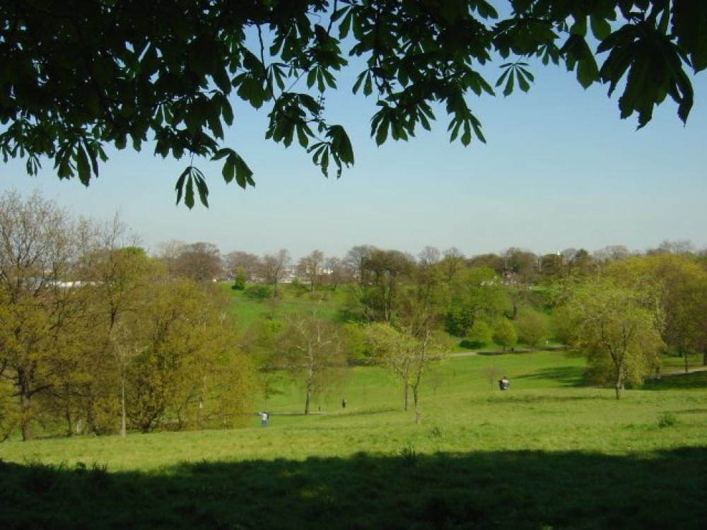 Greenwich Park local dog walk, Greater London - Dog walks in Greater London