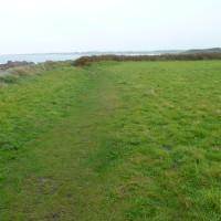 Cap Levi dog walk near Cherbourg, France - Image 3