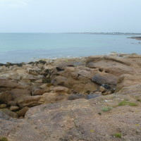 Cap Levi dog walk near Cherbourg, France - Image 4