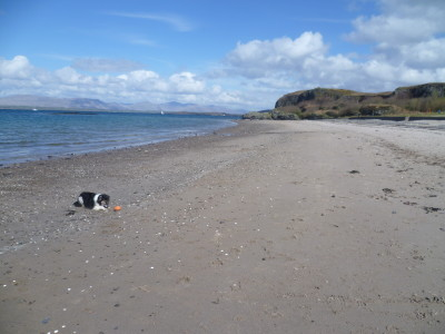 Ganavan dog-friendly beach near Oban, Scotland - Driving with Dogs