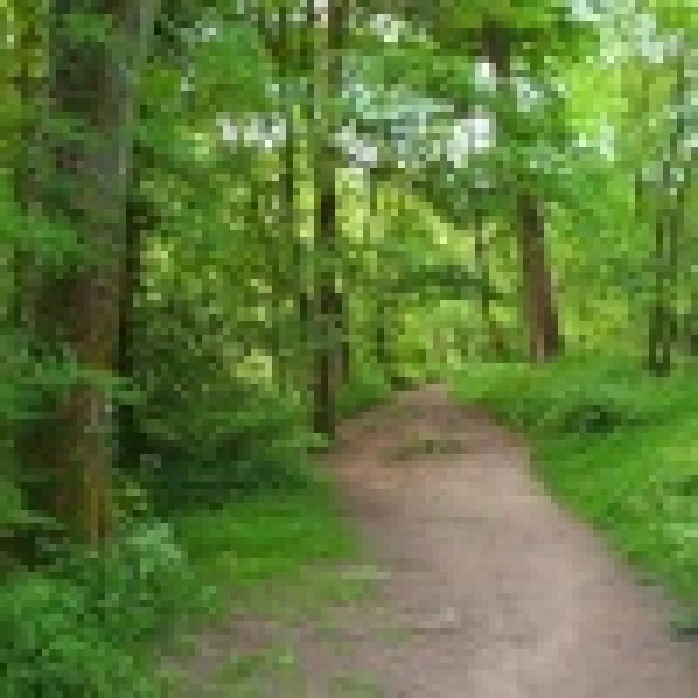 Brock Bottoms dog walk, Lancashire - Dog walks in Lancashire