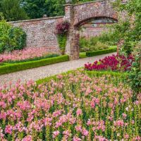 A166 Dog-friendly garden visit, Yorkshire - dog-friendly garden visit.jpg