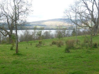 A82 dog walk near Dumbarton, Scotland - Driving with Dogs