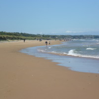 Cherbourg Peninsula dog-friendly beach, France - Image 1