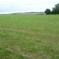 Crecy battlefield dog walk, France - Image 2