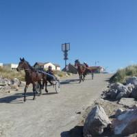 Opal Coast dog-friendly beach near Camiers, France - Image 1