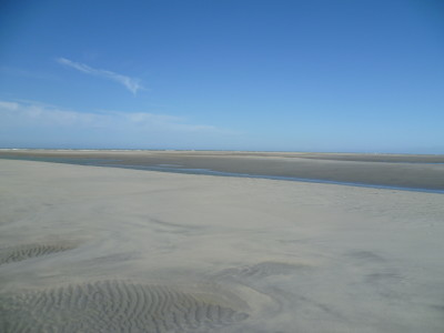 Opal Coast dog-friendly beach near Camiers, France - Driving with Dogs