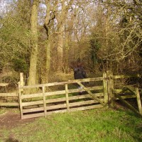 M5 Junction 14 dog walk and farm shop and cafe, Gloucestershire