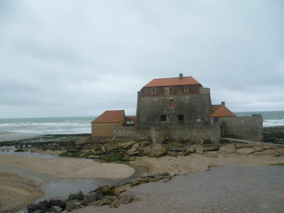 Ambleteuse dog-friendly beach and dog walk, France - Driving with Dogs