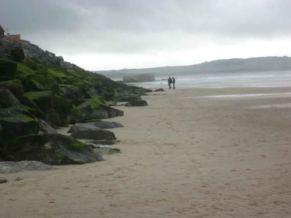 Opal coast dog-friendly beach, France - Image 2