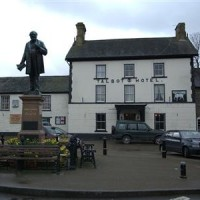 Tregaron dog walk and dog-friendly pub, Wales - Dog walks in Wales