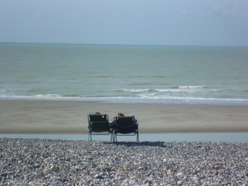 Cayeux-sur-Mer dog-friendly beach, France - Image 1