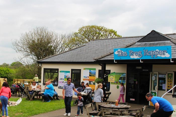 A39 lakeside stroll and dog-friendly cafe, Cornwall - dog-friendly cafe and dog walk close to the A39 in Cornwall.jpg
