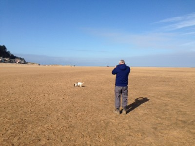 20km of sheer doggie delight Wells next the Sea, Norfolk - Driving with Dogs