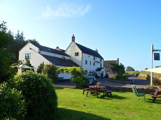 Dog-friendly inn and B&B off the Fosse Way, Somerset - dog-friendly inn and dog walks Somerset.jpg