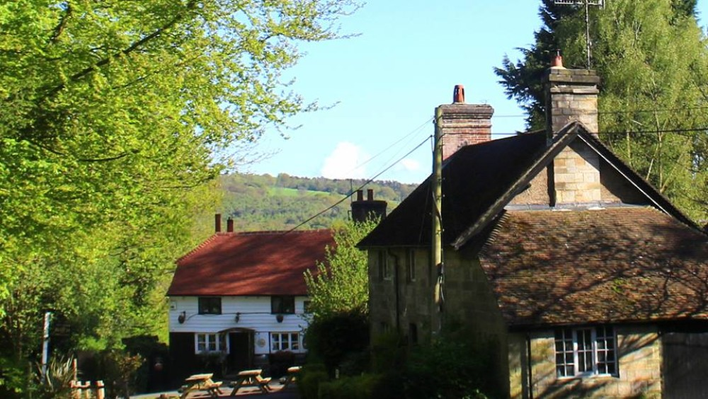 Forest dog walk and nearby pub, East Sussex - Sussex dog-friendly pub and dog walk