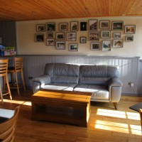 A37 dog-friendly dining and dog walk, Dorset - IMG_0192.JPG