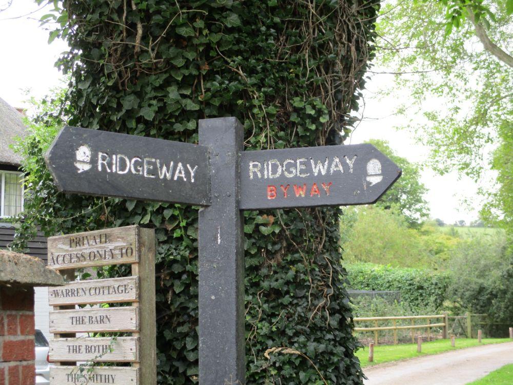 A walk on the chalk downs, Berkshire - Dog walk Oxfordshire.JPG