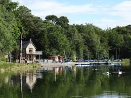 A69 family and dog-friendly country park walks and tea rooms, Cumbria - Cumbria dog walk