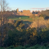 Woodlands, River and Garden dog walks at Cliveden, Buckinghamshire - IMG_0797.jpg