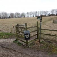 East Ilsley dog-friendly pub and dog walk, Berkshire - Berkshire dog-friendly pub and dog walk