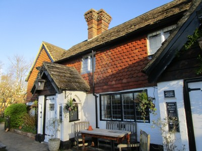 A29 dog-friendly pub and dog walk near Horsham, Surrey - Driving with Dogs