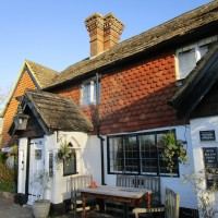 A29 dog-friendly pub and dog walk near Horsham, Surrey - Surrey dog walks and dog-friendly pubs.JPG