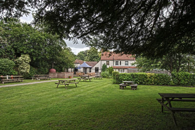 A287 dog-friendly pub and dog walk near Basingstoke, Hampshire - Driving with Dogs