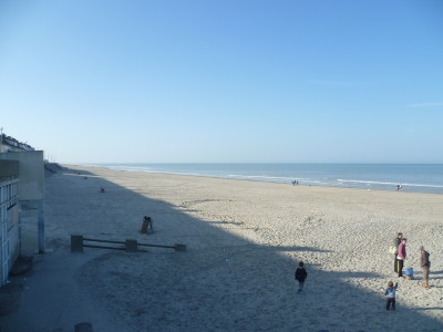 Dog-friendly beach near Quend, France - Driving with Dogs