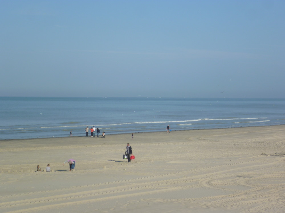 Dog-friendly beach near Quend, France - Image 2