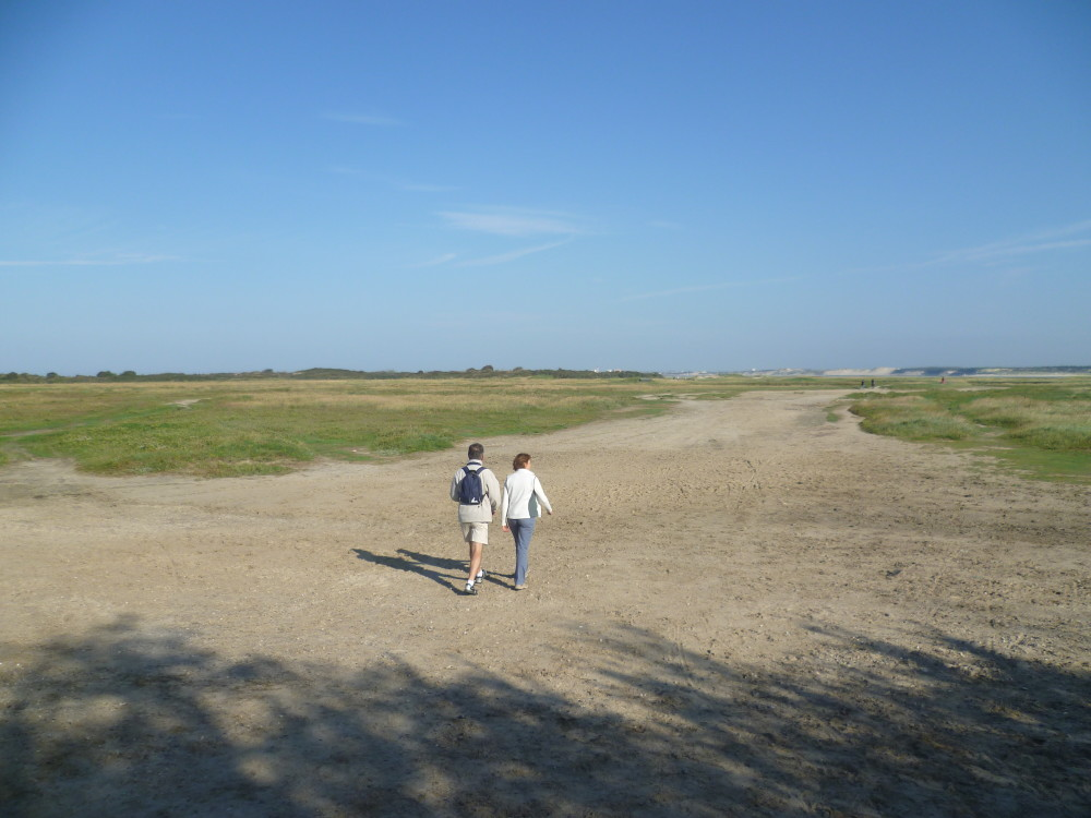 A16 exit 25 dog walk near Fort Mahon, France - Image 4