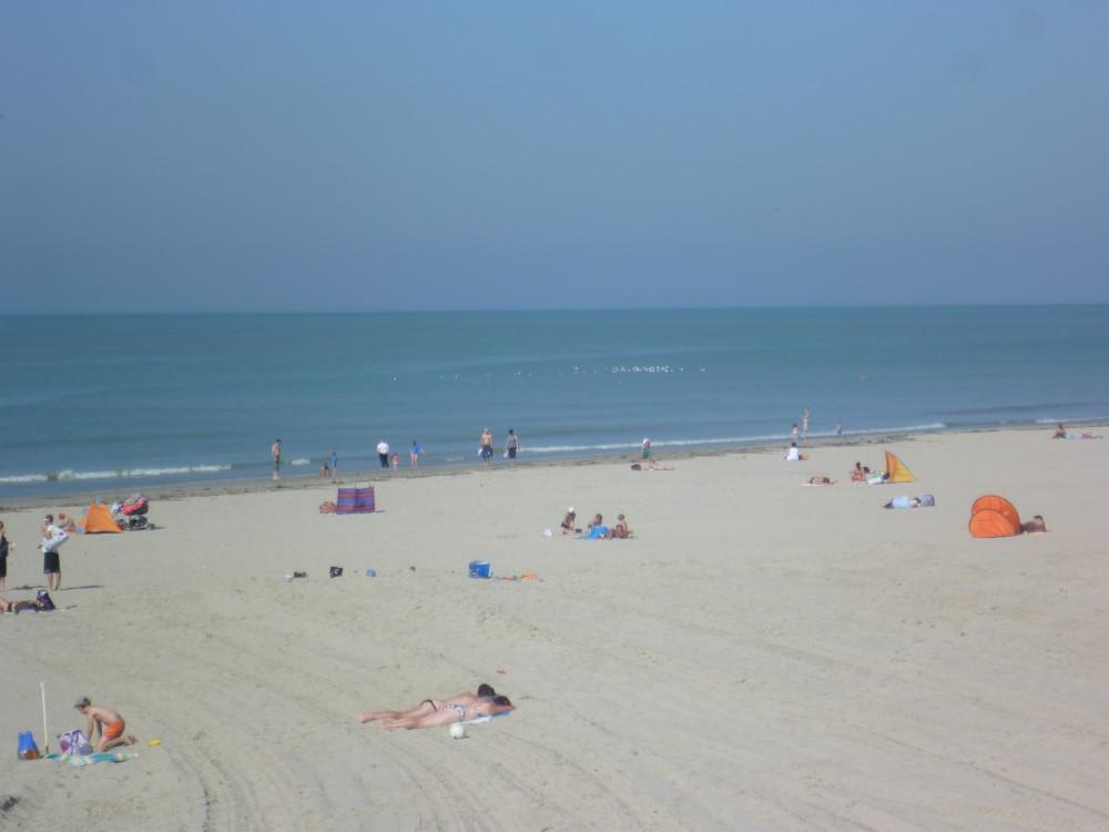 Berck dog-friendly beach, France - Image 4