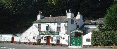 Tavistock dog-friendly pub and dog walk, Devon - Driving with Dogs