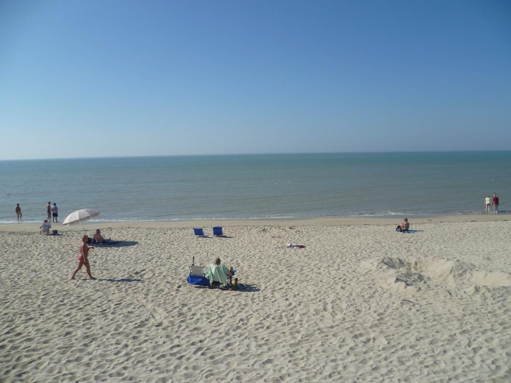 Opal coast dog-friendly beach near Cucq, France - Image 4
