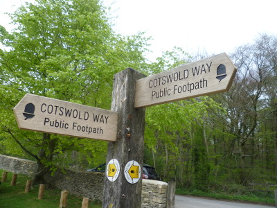Cotswold dog walk, near Stroud, Gloucestershire - Driving with Dogs