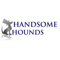 Handsome Hounds Dog Grooming Salon, Studley, Warwickshire - Image 1