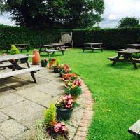 M27 dog-friendly pub with B&B and amble, Hampshire - Hampshire dog-friendly pub and dog walk